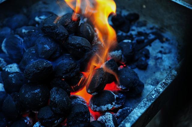 ¿Qué es mejor, carbón o leña para la barbacoa?